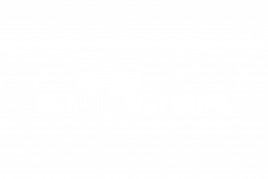 BlicPublic Affairs logo